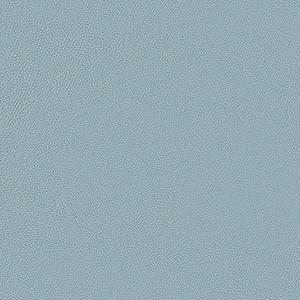 Azul Ringo 2